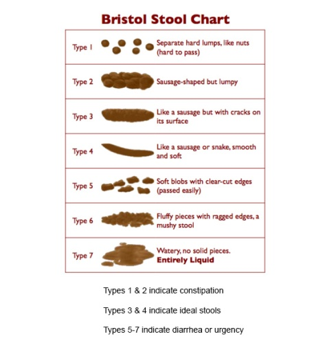 Bristol Stool Chart - The Savory and The Beautiful
