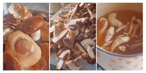 Mushroom ragu 2 | The Savory and The Beautiful
